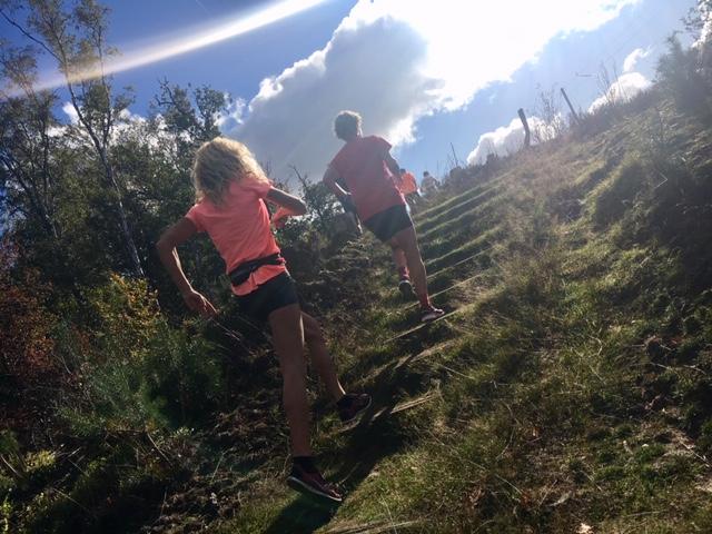 Hoge Veluwe Loop Trail